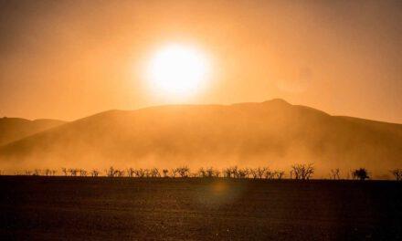 Heiraten in Namibia – Die Hochzeit von Kerstin & Lennart